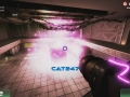Combat kitties vullen de Early Access-screenshots van Cat Warfare