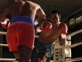 Harde klappen op Fight Night Champion screens