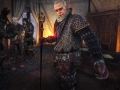 The Witcher op screens